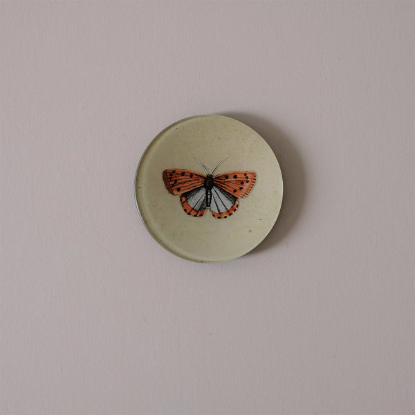"4"" Round Dish, Coral Butterfly"