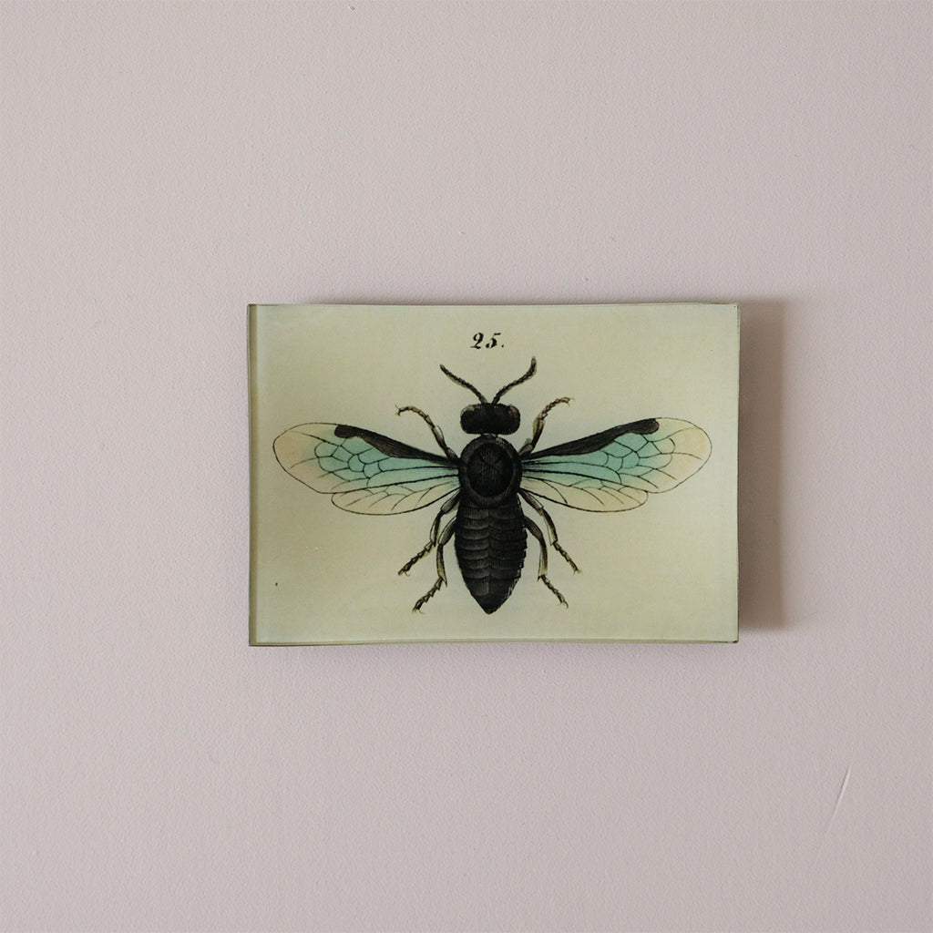 "4.5""x6"" Rectangle Dish, Bee 25"