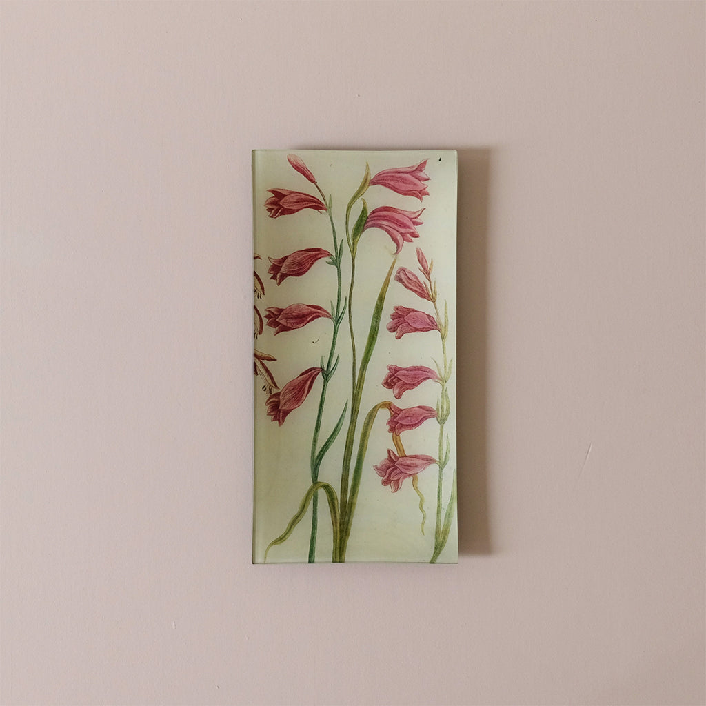 "6""x12"" Pencil Tray, Gladiolus 546"