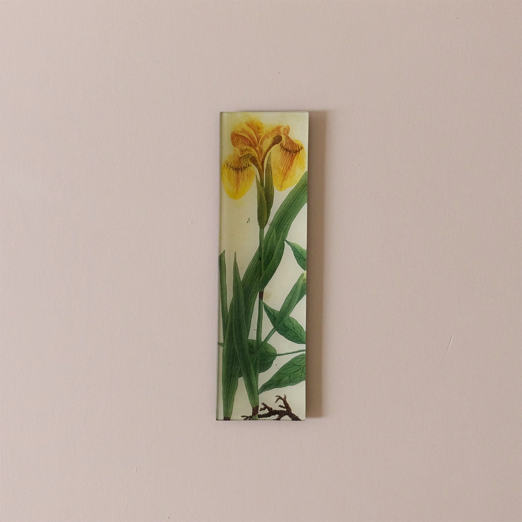 "3.5""x12"" Rectangle Dish, Iris B 606"