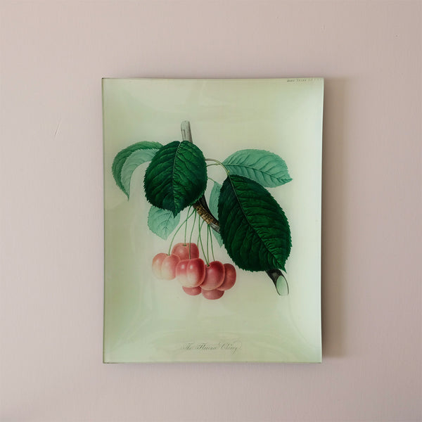 "10""x13"" Rectangle Dish, Florence Cherry"