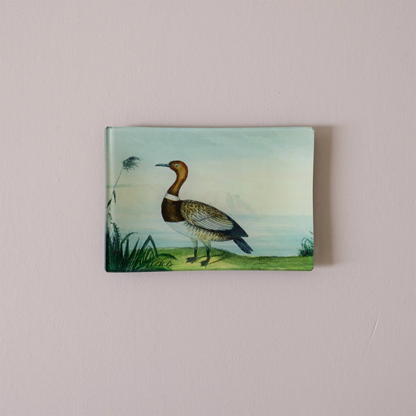 "4.5""x6"" Rectangle Dish, Duck"