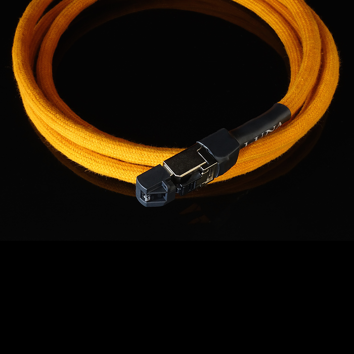 Orange | Ethernet Cable