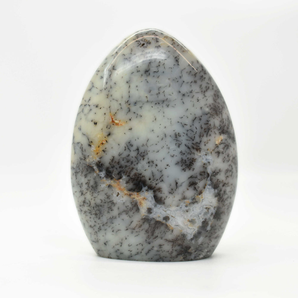 Dendrite Opal Free Form OPDEFF012