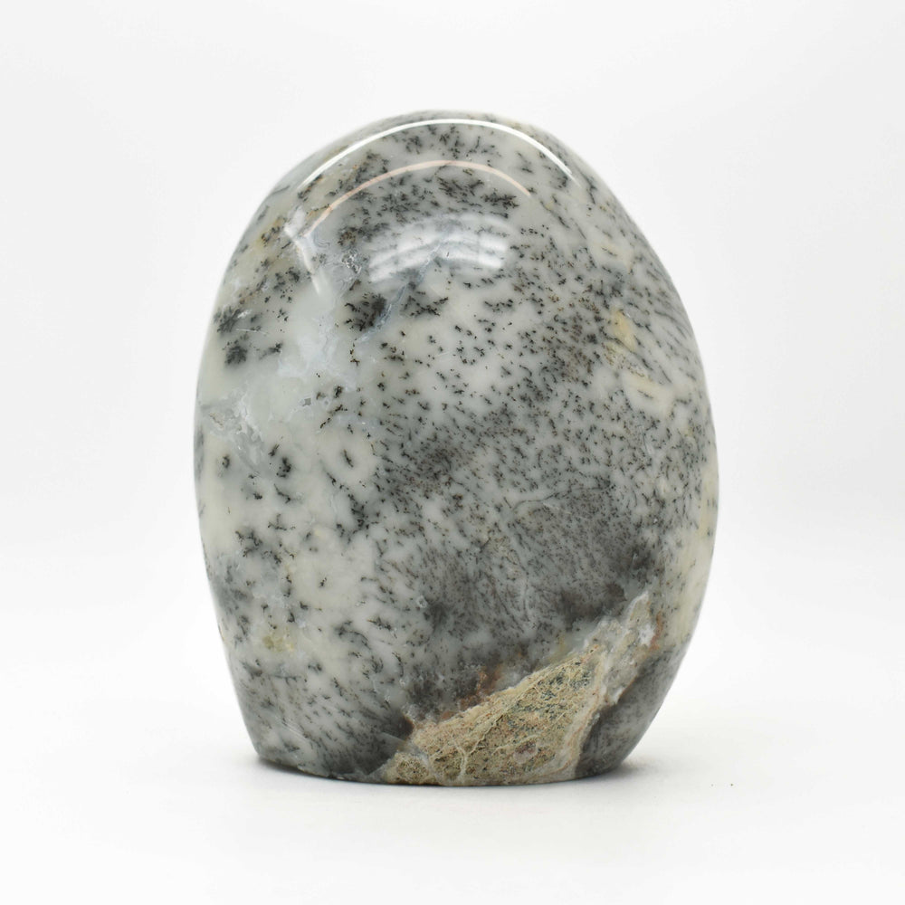Dendrite Opal Free Form OPDEFF024