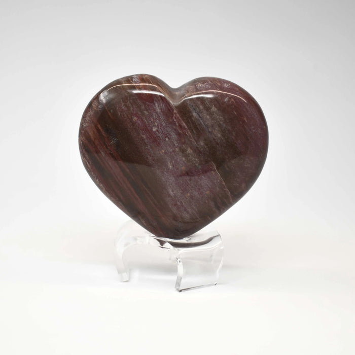 Petrified Wood Heart PWODHR007 - Madagascar Import SEAM Inc.