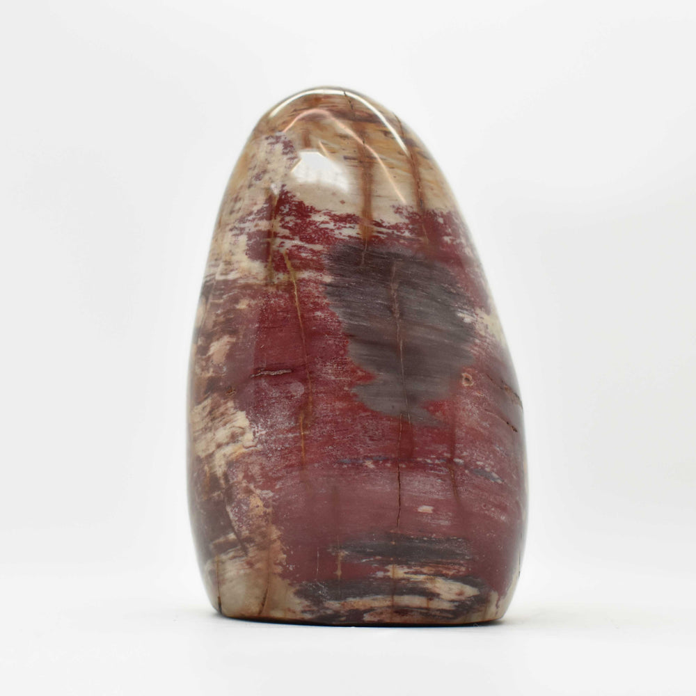 Petrified Wood Free Form PWODFF024