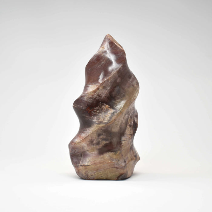 Petrified Wood Flame PWODFM018 - Madagascar Import SEAM Inc.