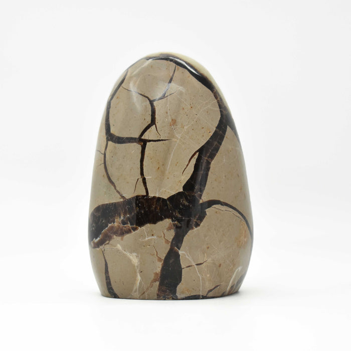 Yellow Septarian Free Form SEYLFF028