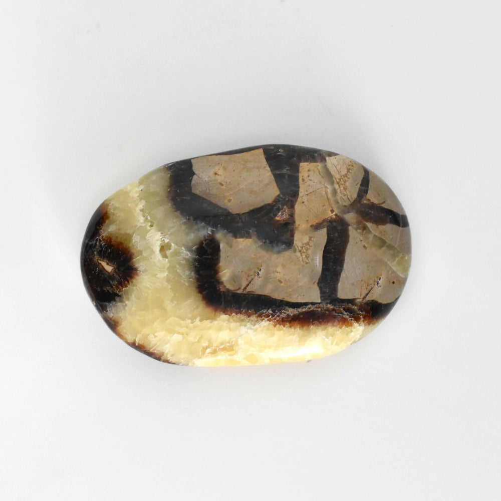 Yellow Septarian Galet SEYLGA002 - Madagascar Import SEAM Inc.