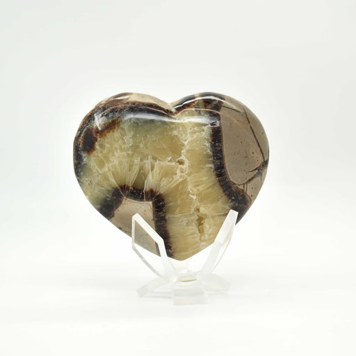 Yellow Septarian Heart SEYLHR010 - Madagascar Import SEAM Inc.