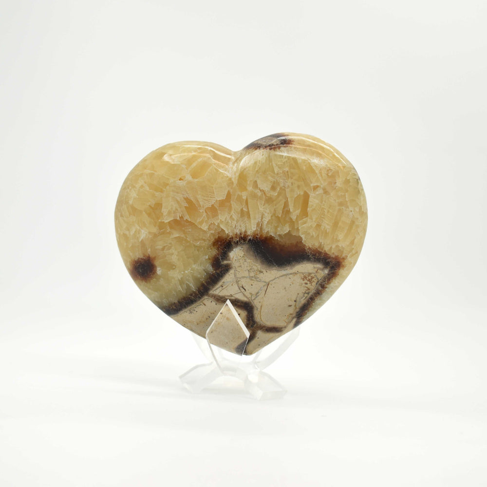 Yellow Septarian Heart SEYLHR015 - Madagascar Import SEAM Inc.