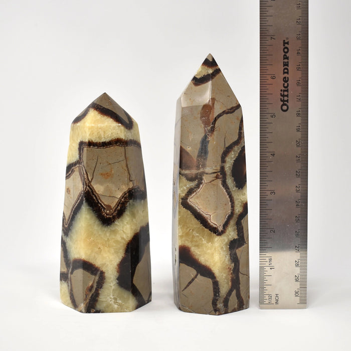 Yellow Septarian Prism SEYLPR022 - Madagascar Import SEAM Inc.
