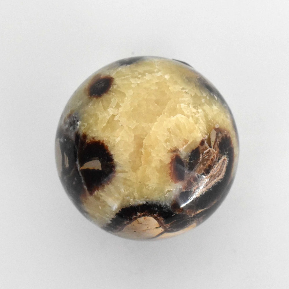 Yellow Septarian Sphere SEYLSP015 - Madagascar Import SEAM Inc.