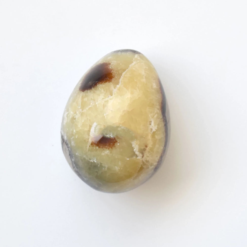 Yellow Septarian Egg SEYLEG008 - Madagascar Import SEAM Inc.