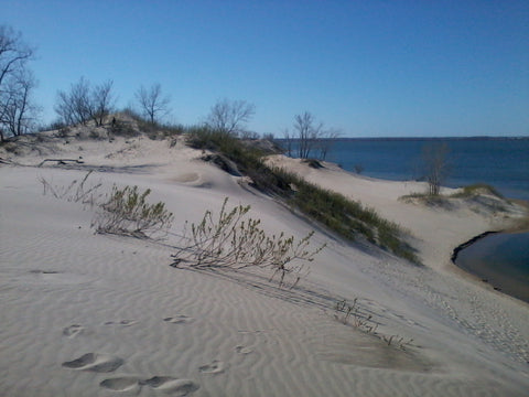 Sandbanks Dune Prince Edward County