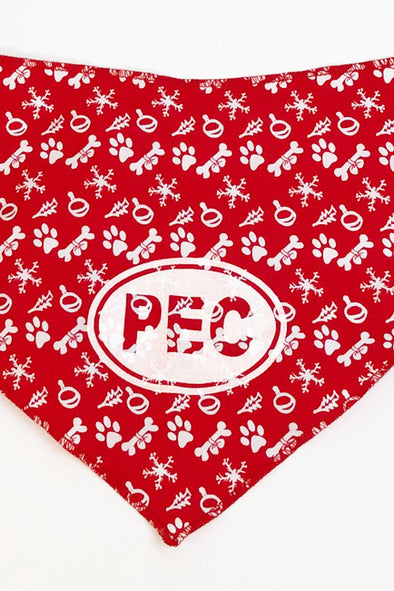 PEC Oval DOG Pet BANDANA • PAISLEY RAINBOW PRIDE PLAID HOLIDAY  • Prince Edward County
