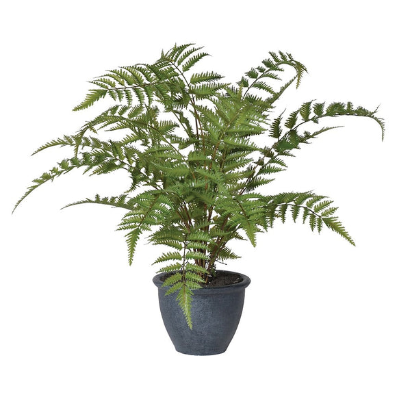 Faux Green Bracken Fern Plant in Dark Grey Pot