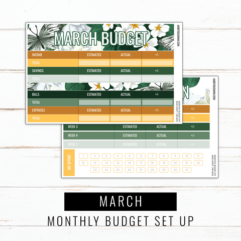 March Budget Sticker Kit | Full Listing (Base Kit, Transaction Log, Debt Payment, Sinking Funds, Sinking Expenses)