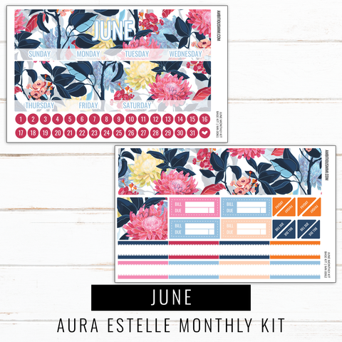 June Monthly Kit | Aura Estelle Monthly Sized
