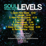 """Levels"" Album - Vinyl LP"