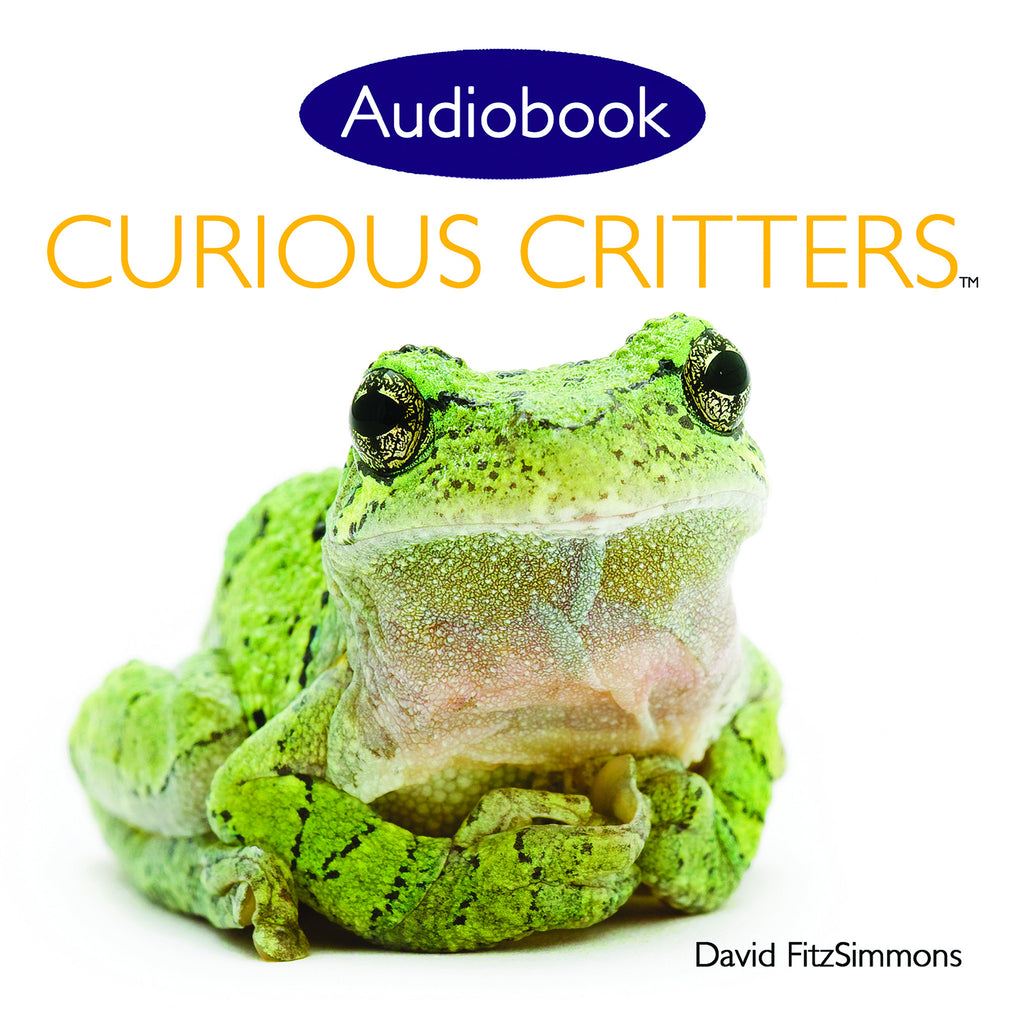 Curious Critters Volume One