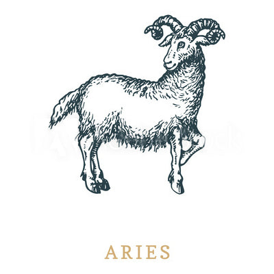 aries-zodiac-sign-couple-signification