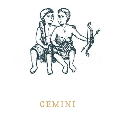gemini-zodiac-sign-couple-signification
