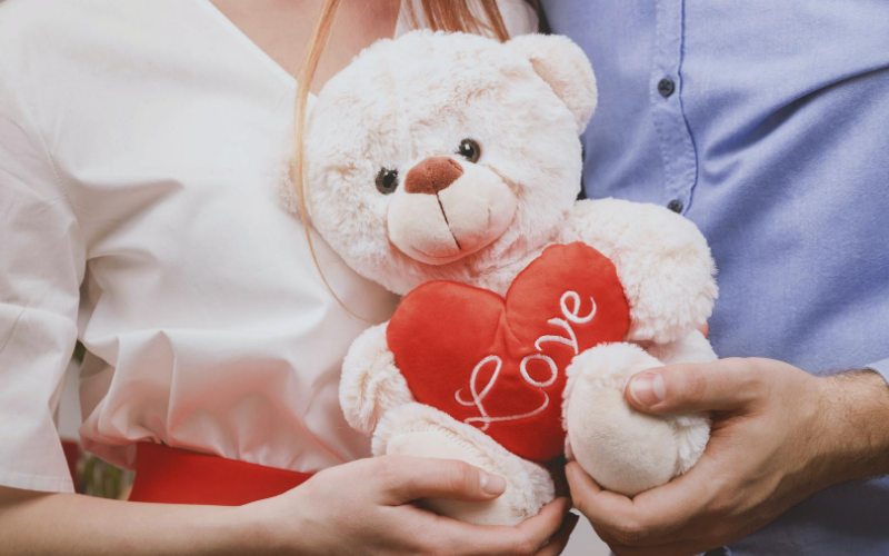 valentines day teddy bear heart couple look alike