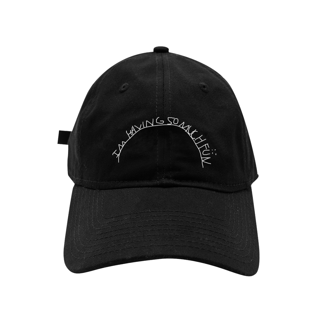 So Much Fun Dad Hat