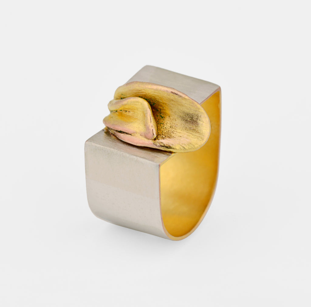 Contemporary Ring - Gold and Silver