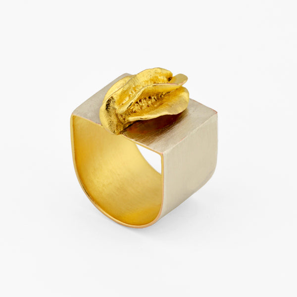 Contemporary Ring - Silver and Gold