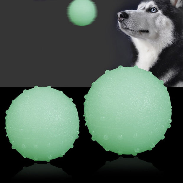 EZ-PLAY Dogs Glowing Rubber Ball