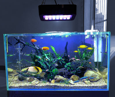 WATTSHINE Aquarium LED Dimmable Bay Light