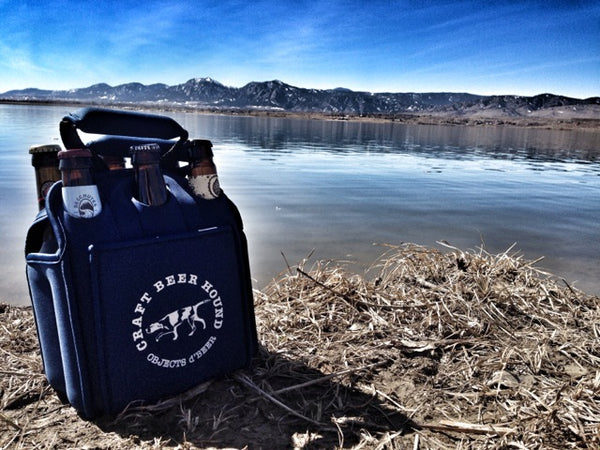 Insulated reusable 6-pack beer carrier
