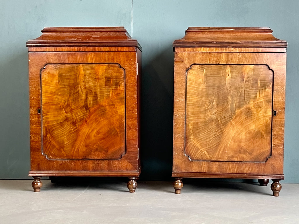 A Pair of Regency Pedestal Cabinets