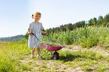 Load image into Gallery viewer, Rolly Pink Metal Wheelbarrow