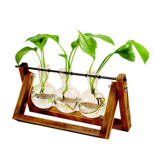 Terrarium Creative Hydroponic Plant Transparent Vase Wooden Frame Vase Decoratio Glass Tabletop Plant Bonsai Decor Flower Vase
