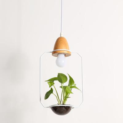 Image of Zox - Modern Nordic Iron Pendant Planter Lamp