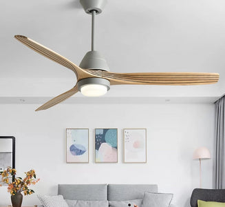 Modern Nordic Ceiling Fan with LED Light