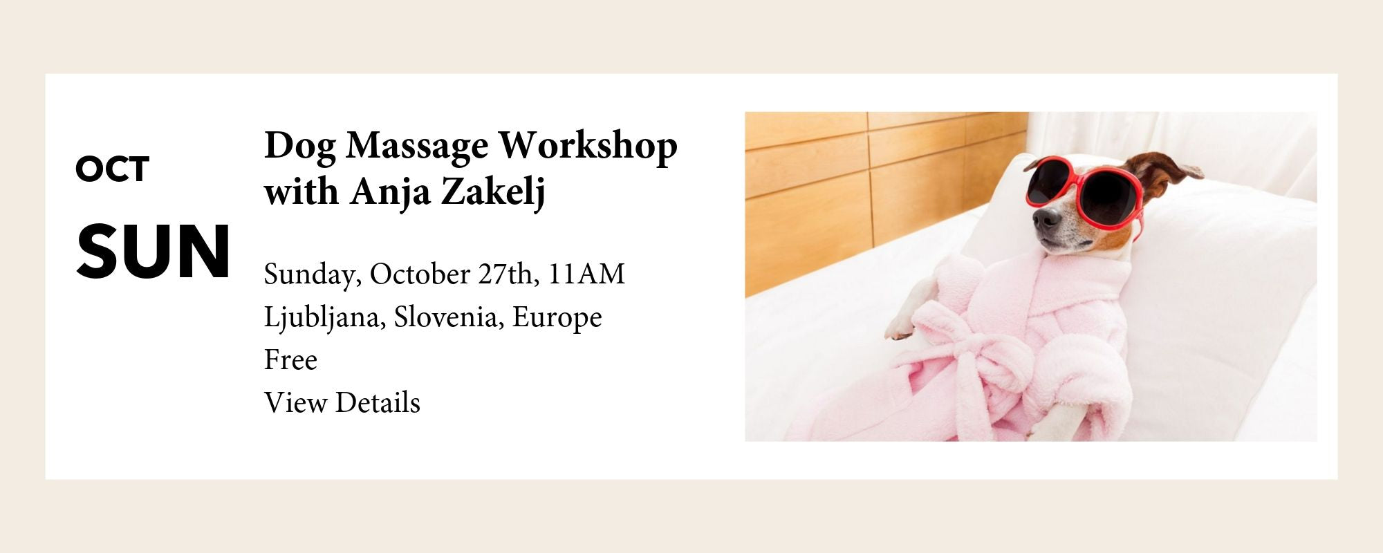 FLOUFFY Dog Massage Workshop Ljubljana