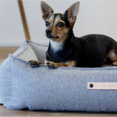 Labbvenn Møvik Dog Bed Grey