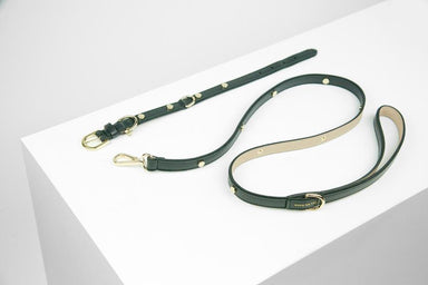 Beatrix Leash