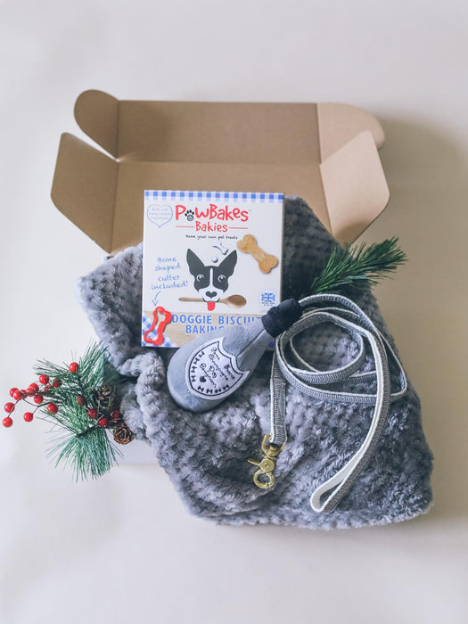 Modern & Fun Dog Gift Box