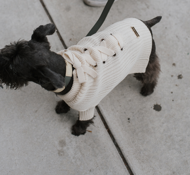 Max-Bone Mika dog knit jumper