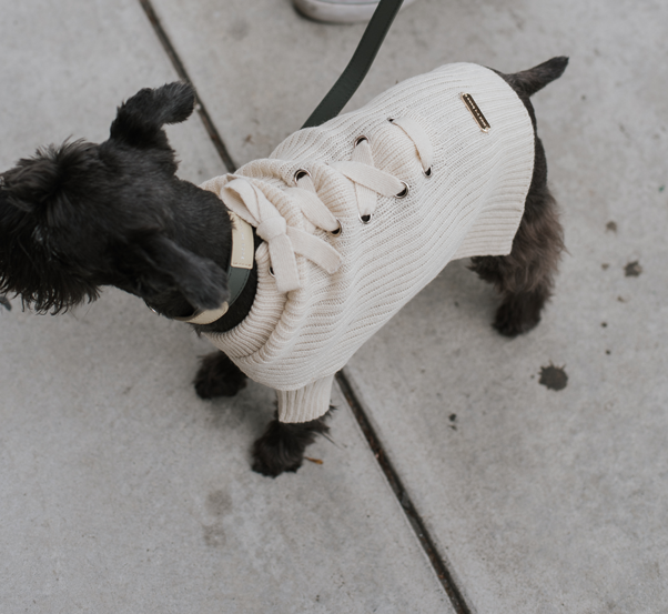Mika dog knit jumper