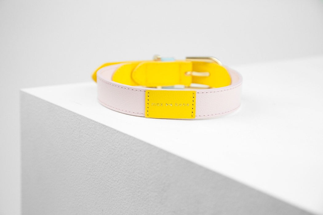 Isabel leather dog collar