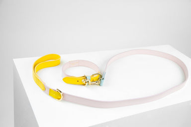 Isabel leather dog leash