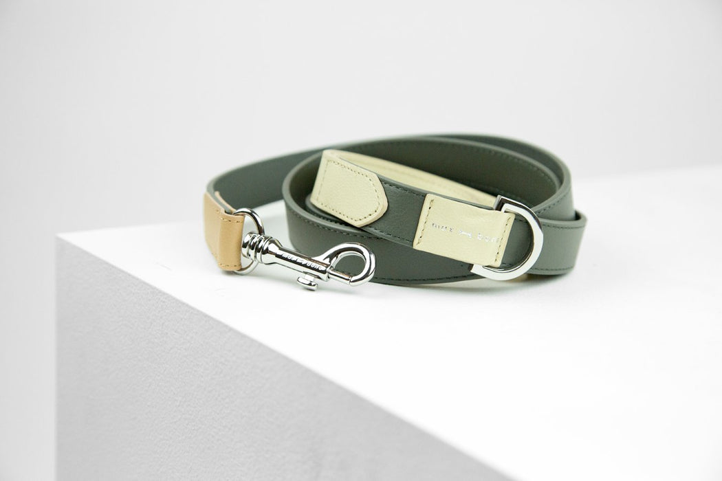 Theo leather dog leash