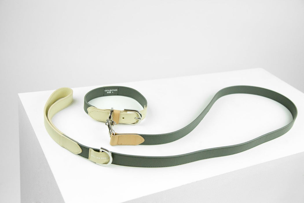 Theo leather dog collar